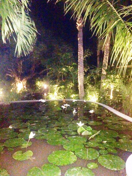 Lily ponds and palm trees adorn the landscape at the Tamarin