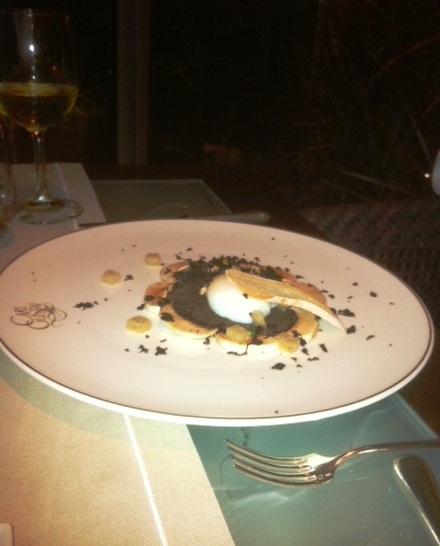 Farm Fresh Egg Cooked at 62º, Black Truffle and Paris Mushroom Velouté